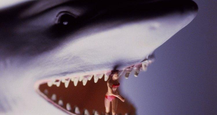 """Você pode até comer pessoas no """"Hungry Shark"""""""