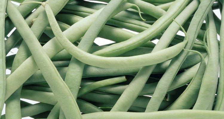 Como la mayoría de las verduras, es bastante fácil darse cuenta cuando las habichuelas están en mal estado.