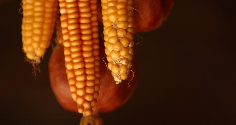 O fubá e a farinha de milho são produtos do mesmo vegetal