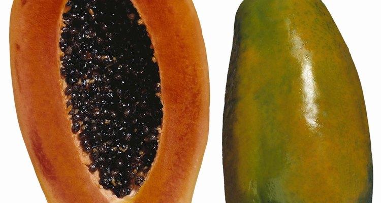 Las semillas de papaya requieren un gran cuidado.