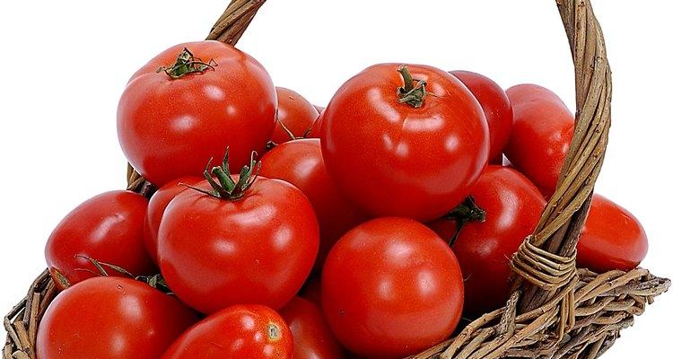 Una cosecha de tomates exitosa.