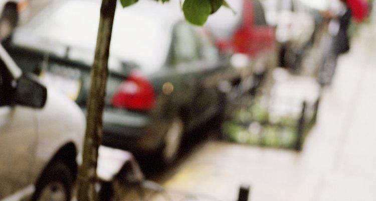 A seiva encharca o revestimento do carro, causando grandes danos