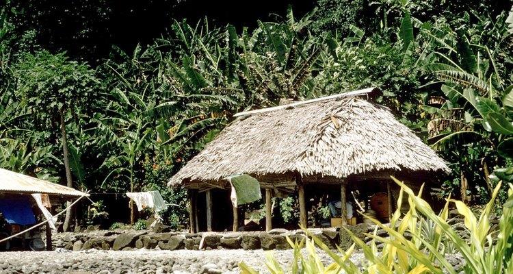 Esta cabaña de selva tropical se encuentra fuera del suelo mojado en troncos y no tiene paredes.
