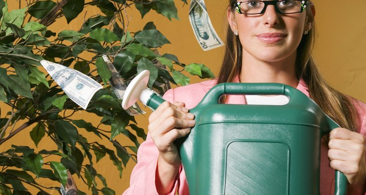 En la práctica del feng shui, se dice que el árbol del dinero atrae energía positiva y éxito financiero.
