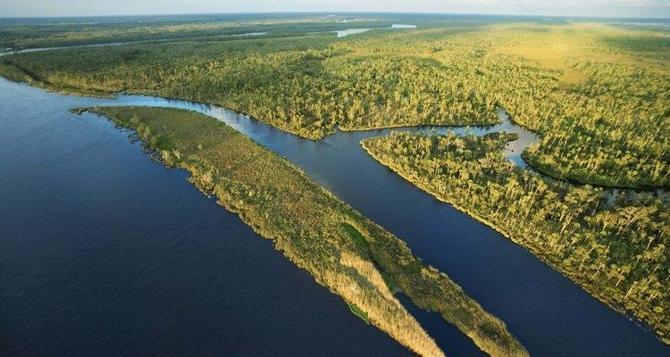 Los Everglades son algunos de los mejores recursos naturales de la Florida.