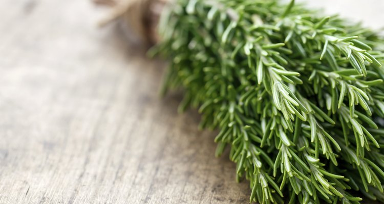 Rosemary on rustic wooden table background