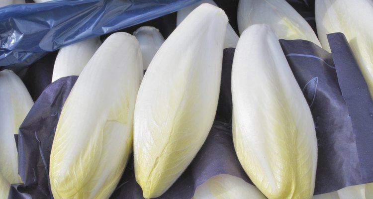 endives  wrapped in box