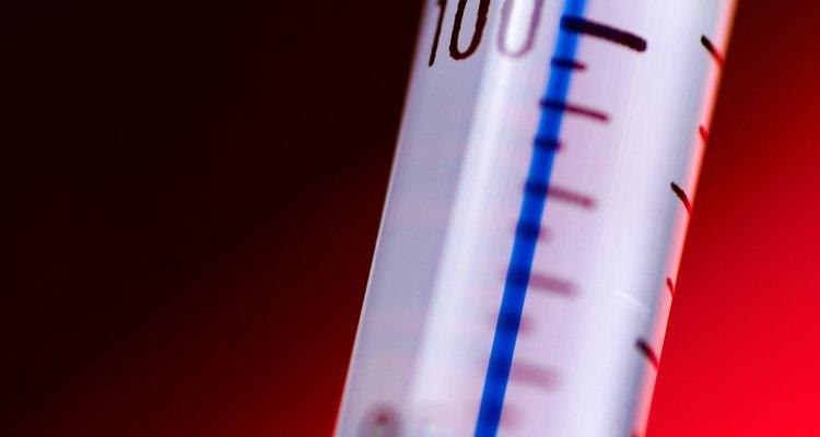 Platelmintos da espécie Schistosoma podem causar febres potencialmente letais em humanos