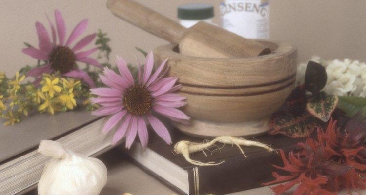 Essências de flores são usadas em Remédios Florais de Bach