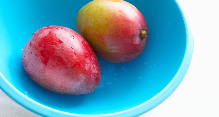 Los mangos maduros y frescos son mejores para cosechar las semillas.