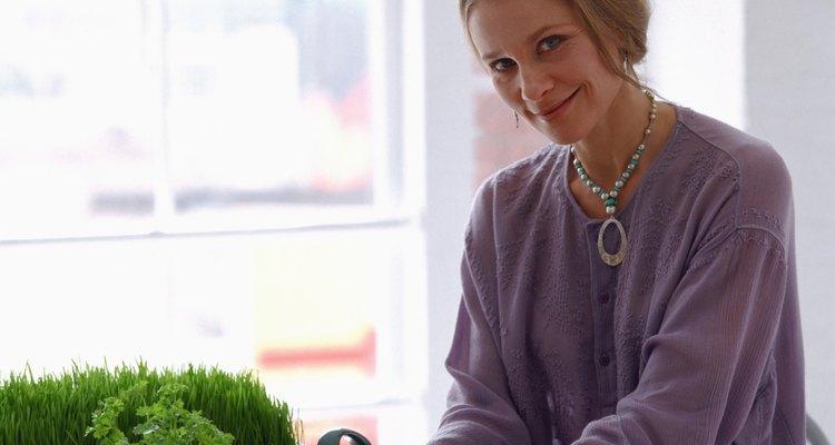 Los nutricionistas te pueden ayudar a tener una vida sana a través de la alimentación saludable.