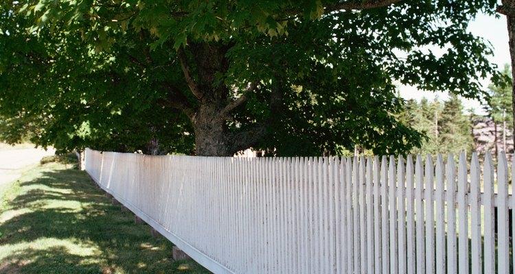 Las cercas perimetrales delimitan las distintas zonas.