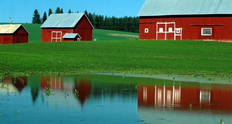 Um tanque de água é um item valioso para um fazendeiro ou proprietário rural