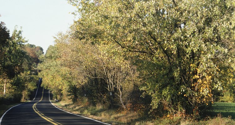 Pensilvania esta rodeada por cientos de kilómetros de senderos.