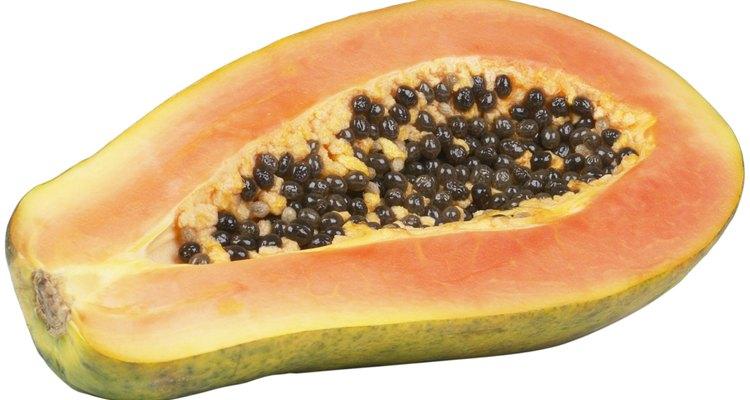 Las plantas de papaya son ejemplos de hierbas de gran tamaño.