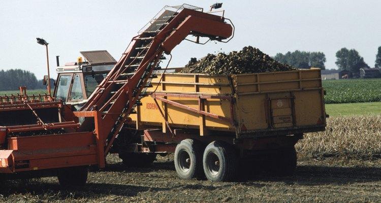 Estas máquinas están diseñadas para los dueños de huerta que no tienen el tiempo para ir a través de cada árbol y recoger la fruta a mano.