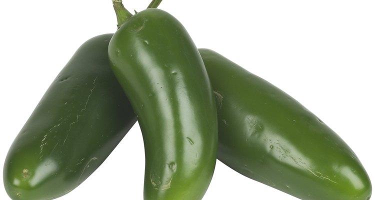 Jalapeños são uma cultura vegetal caseira bastante popular