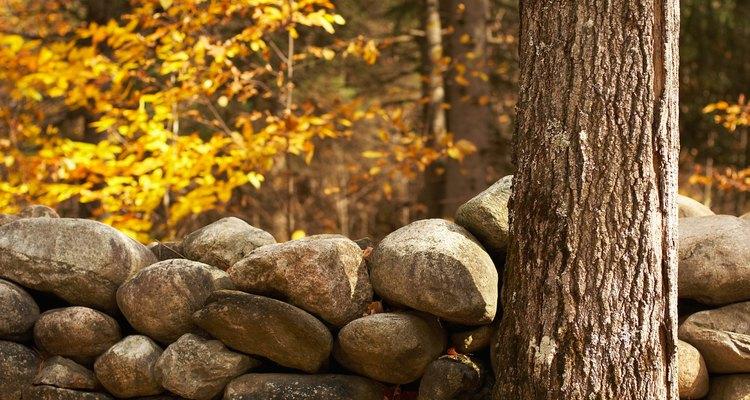 Elige piedras autóctonas para conseguir un mejor resultado.