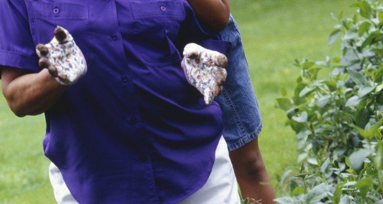 Extrae las malezas que comienzan a invadir el césped o el jardín.