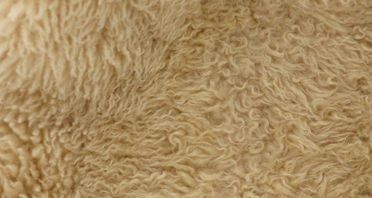 Quita el olor a humedad de la alfombra.