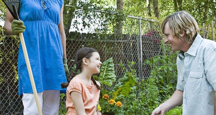Flowering perennials are an essential element of most flower gardens.
