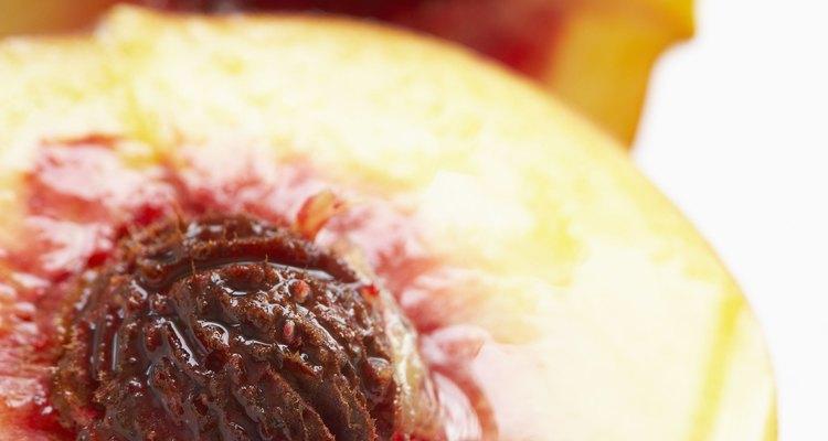 El carozo es el camino para los nutrientes durante el crecimiento.