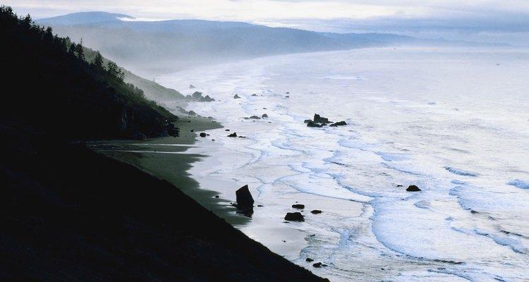Las olas rompen en el Redwood National Park de California.