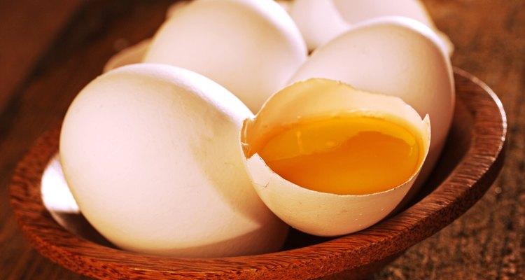 Gemas de ovos colocadas sobre a ração comum de cães estimula os mais exigentes para comer