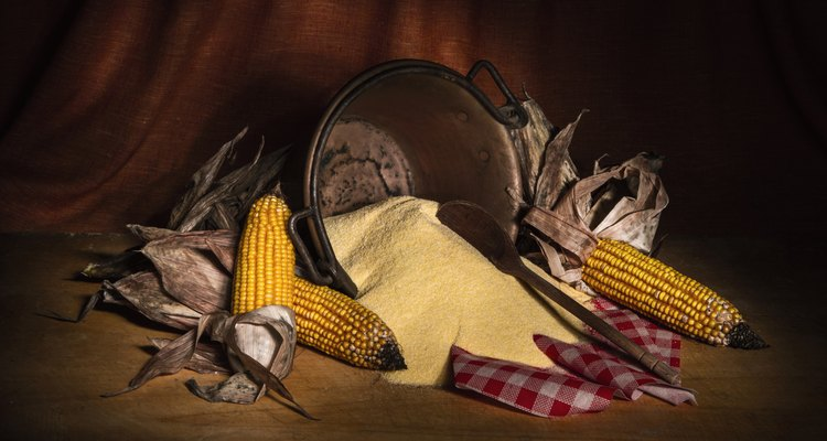 Artistic Still Life with Corn Vegetables