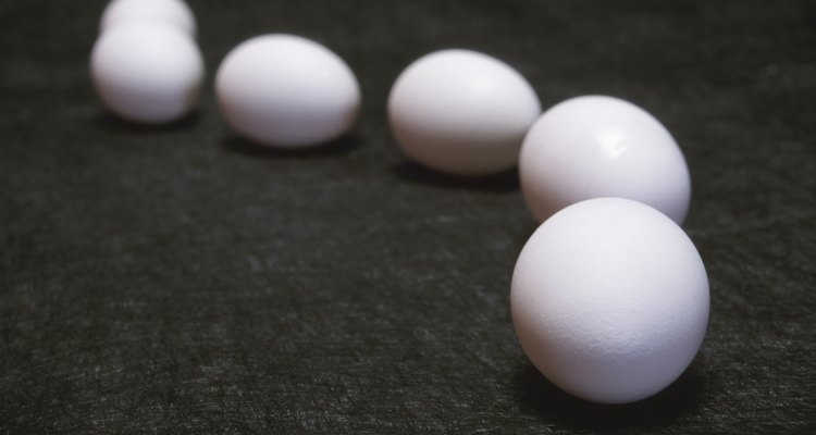El huevo es una fuente de proteína que puedes incluir en la dieta de tu Rottweiler.