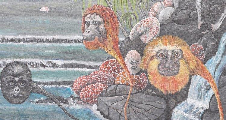 Los seres humanos comparten características de adaptación de los primates con los simios y monos.