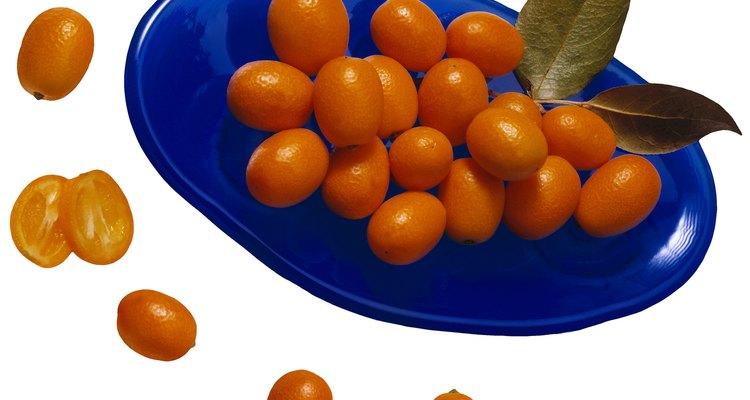 O kumquat é nativo do Japão