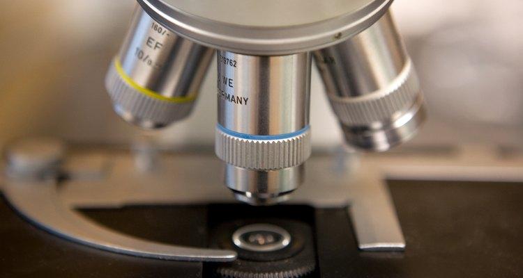 ¿Para qué se utiliza la luz fluorescente de microscopio?.