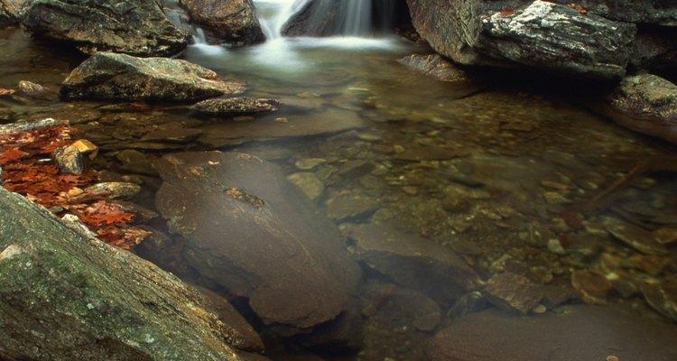 Al recorrer el sendero Glen Burney podrás admirar hermosas cascadas.