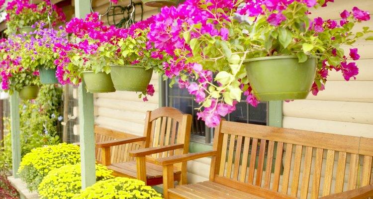 Los contenedores y macetas colgantes de flores dan la bienvenida a los invitados a la puerta delantera.
