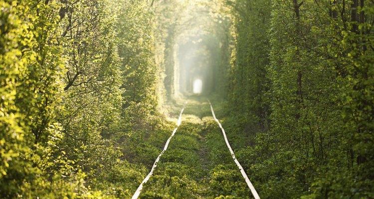 Aún pueden verse los raíles de la vía férrea.