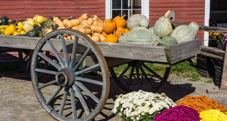 old wagon piled with squash for sale in the fall