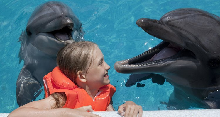 Little girl swimming with dolphins