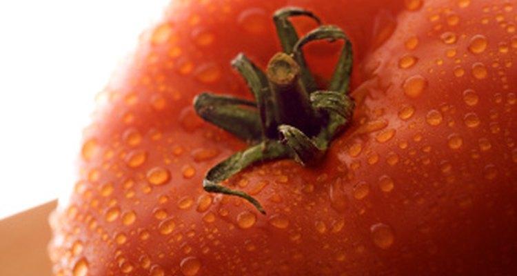 Aunque el tomate es altamente nutritivo, puede ser la causa de dolor de estómago para algunos.