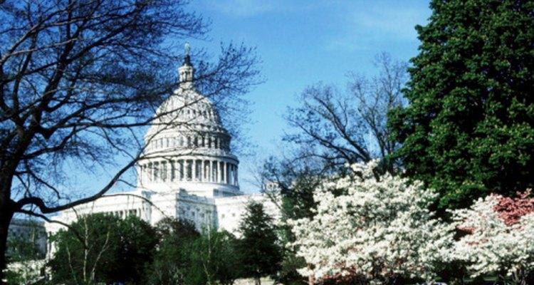 Ayuda a los estudiantes a comprender los poderes ejecutivo, judicial y legislativo del gobierno de Estados Unidos.