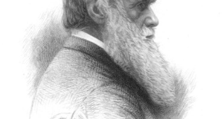Charles Darwin demostró que los animales muestran emociones.