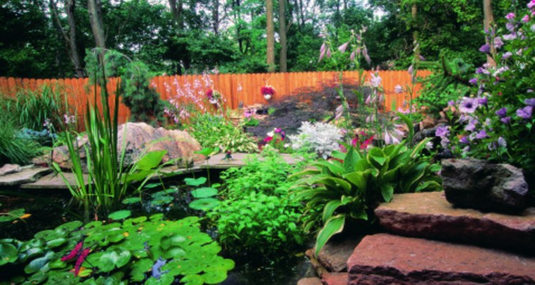Build a two-level pond in your backyard.