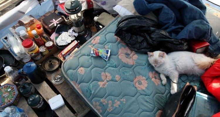 Un colchón es el ambiente ideal para las chinches.