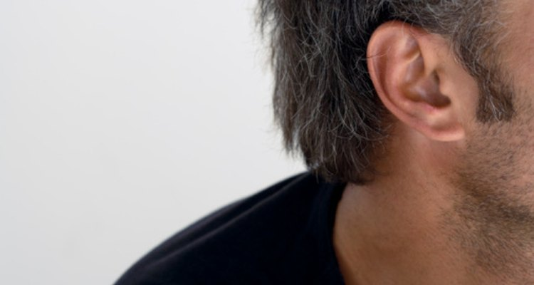 Las perforaciones de oreja convencionales utilizan una aguja de calibre 20. Ese es también el tamaño de partida para medición del oído, una tendencia moderna que imita los antiguos medios tribales de la decoración del cuerpo.