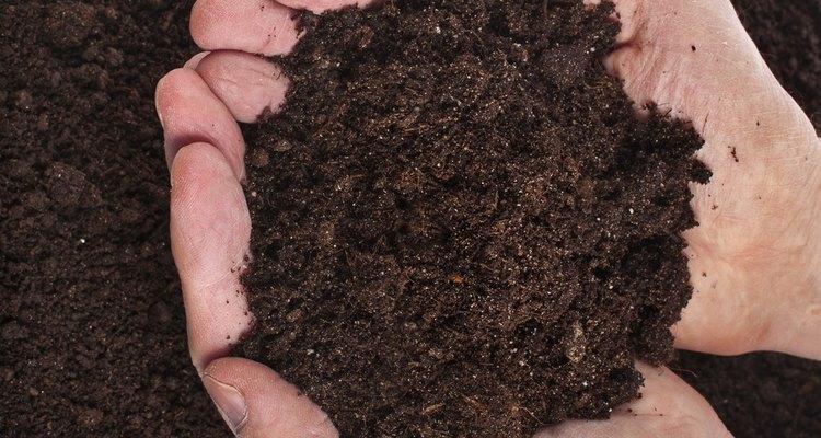 El sustrato es el material del que nacerán tus plantas; encárgate de que sea equilibrado.