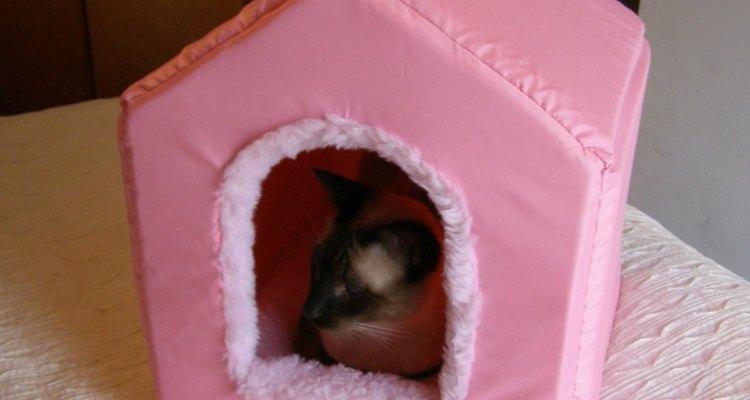 Una casita para gatos es una opción ideal para tu mascota.