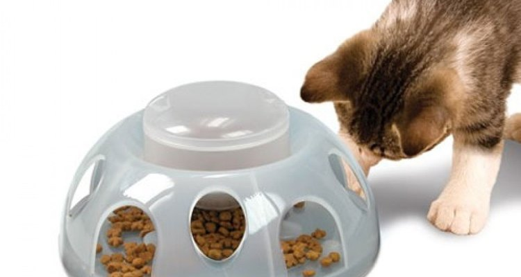 Un comedero estimulará a tu gato a encontrar un equilibrio en su ración de comida.