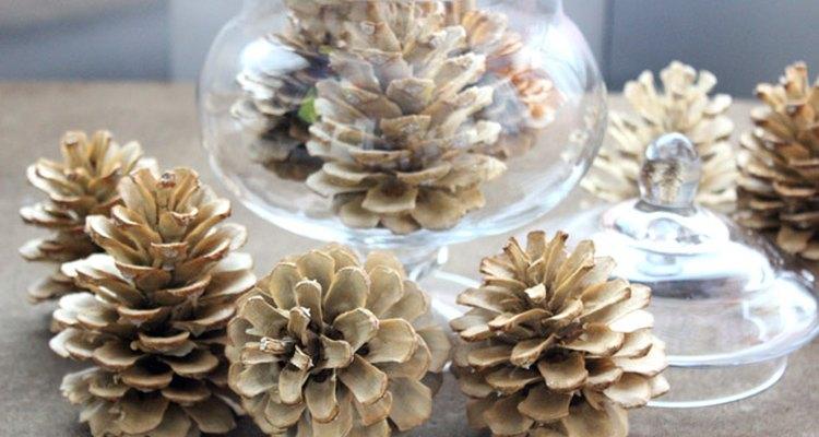 Pinhas descoloridas ficam bem na decoração durante o ano todo