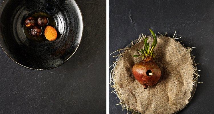 Noma es considerado uno de los restaurantes más influyentes del siglo.