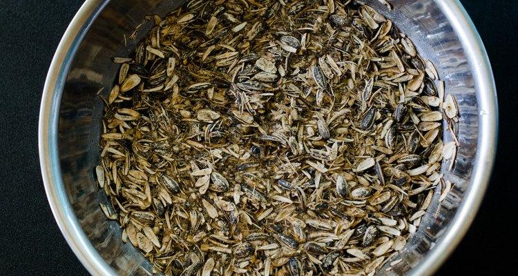 Coloque as sementes em uma vasilha
